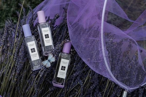 Jo Malone Lavenderland Limited Edition Collection